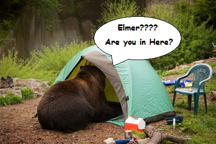 Yosemite Black Bear The Story of Elmer