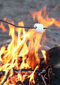 Roasting Marshmallow Yosemite